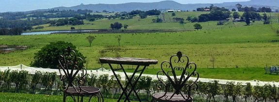 Sydney BlogCategory SS AHeadyExperienceAtHunterValleyWineries