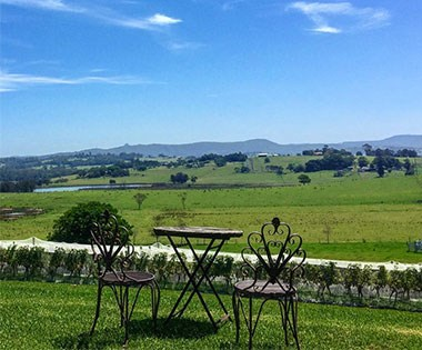 Sydney Blog AHeadyExperienceAtHunterValleyWineries