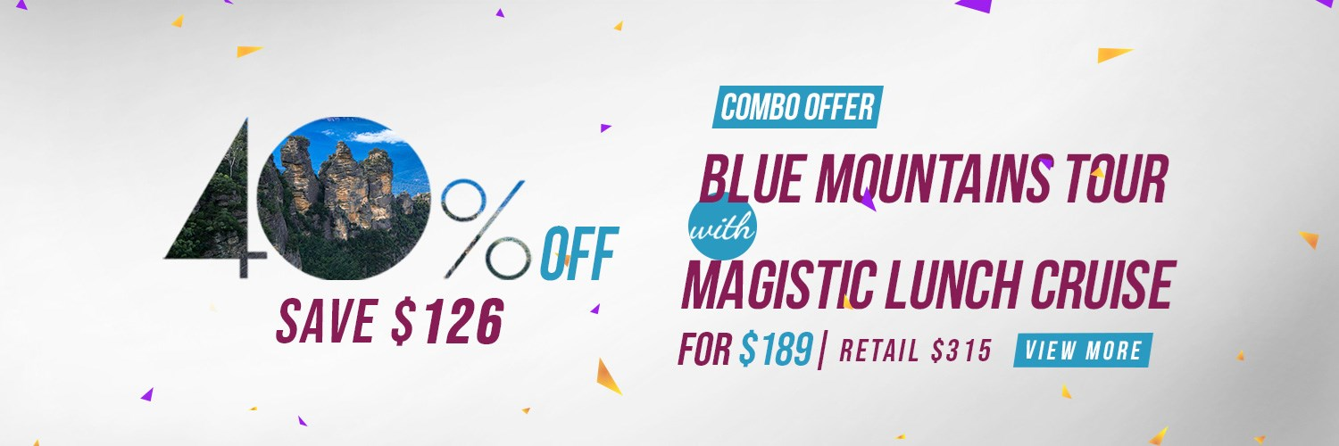 Blue Mountains Discount Banner