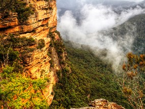 Full Day OTT Blue Mountains & Featherdale Park Tour POP