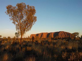 Uluru Sunrise and sightseeing