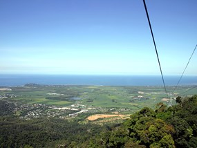 AUCNS Brett's Kuranda Half Day Tour  Late Start POP