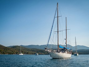 AUCAI Big Mama Sailing Half Day Adventure Sailing to Magnetic Island POP