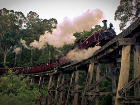 Puffing Billy Steam Train & Yarra Valley Wineries Tour