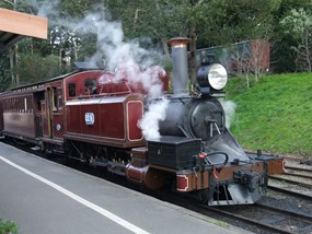 Puffing Billy Steam Train & Healesville Wildlife Tour