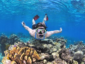 AUCNS Hostel Reef Trips _ Reef Experience POP