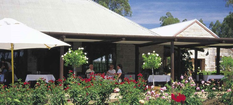 Half Day Gray Line Hunter Valley Food Wine Lovers Tour With Gourmet Lunch BNR03