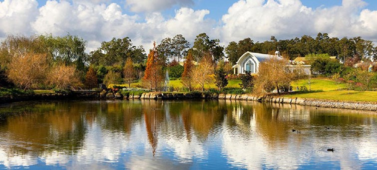 Half Day Gray Line Hunter Valley Food Wine Lovers Tour With Gourmet Lunch BNR02