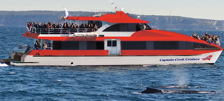 Captain Cook Whale Watching Cruise AM BNR04