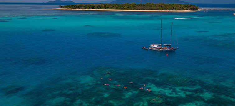 AUCNS Ocean Free Sail & Snorkel To Green Island With Optional Scuba Diving BNR4new