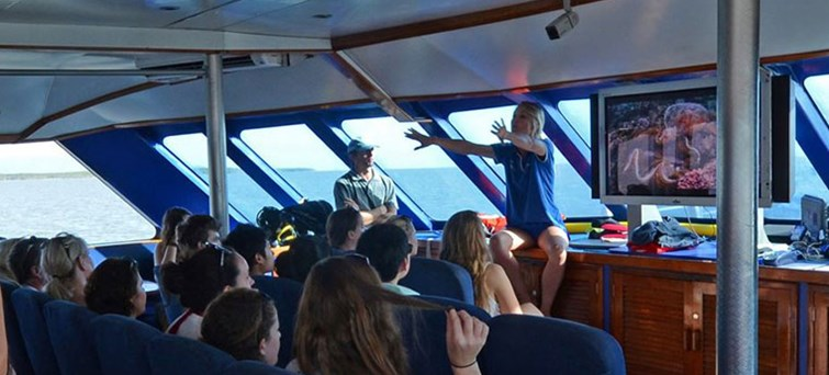 AUCNS Hostel Reef Trips _ Reef Experience BNR2
