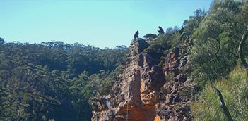 Half Day High Wild Adventures Spectacular Abseiling Tour WCU03