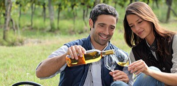 Half Day Gray Line Hunter Valley Food Wine Lovers Tour With Gourmet Lunch WCU01