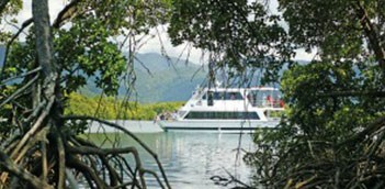 Half Day Big Cat Green Island Cairns Reef Tours (1pm) WCU2