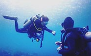 Introductory Diving (2 dives)